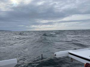 Ah, that gale!