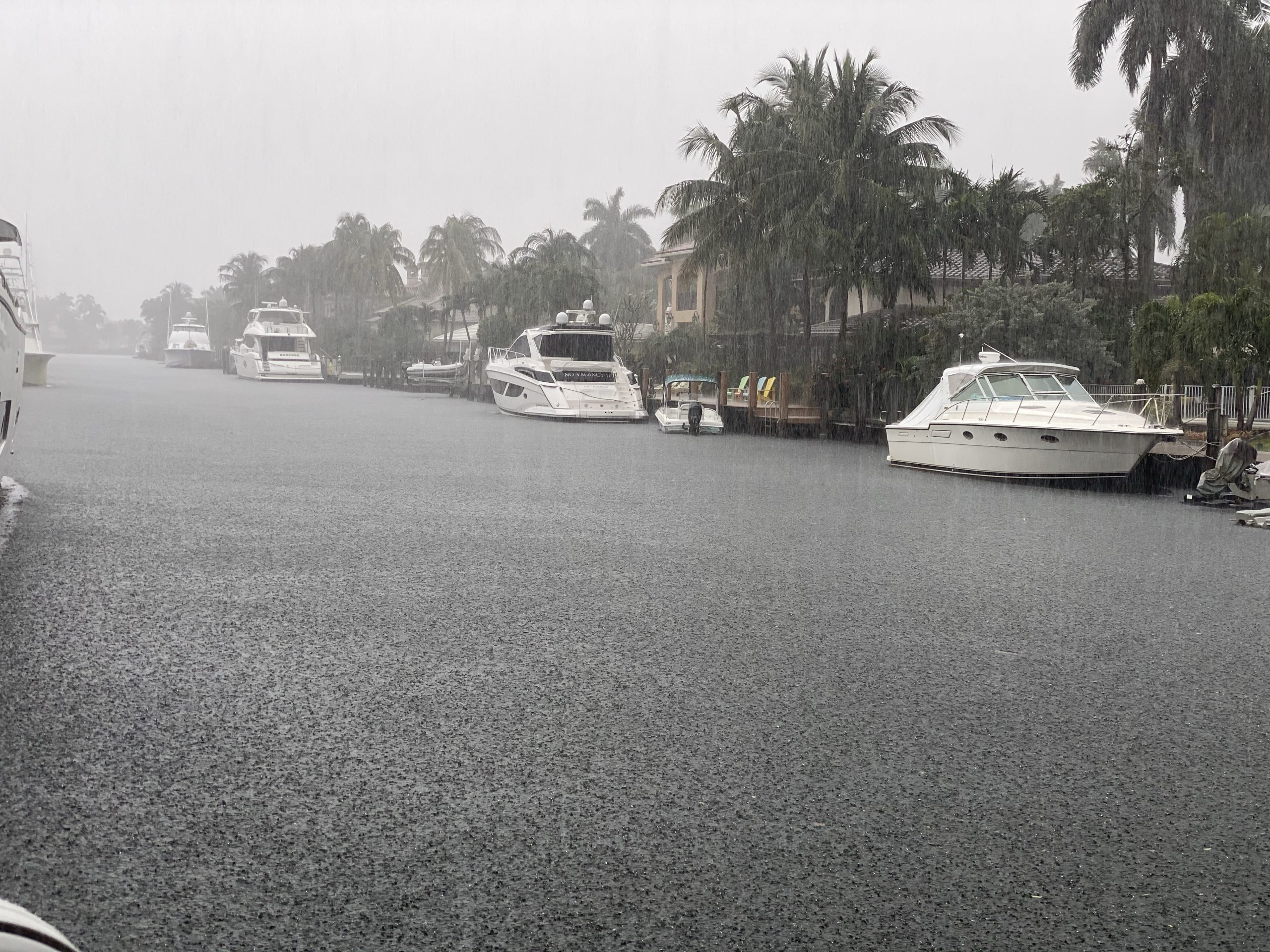Come to Fort Lauderdale, enjoy the sun, the warmth