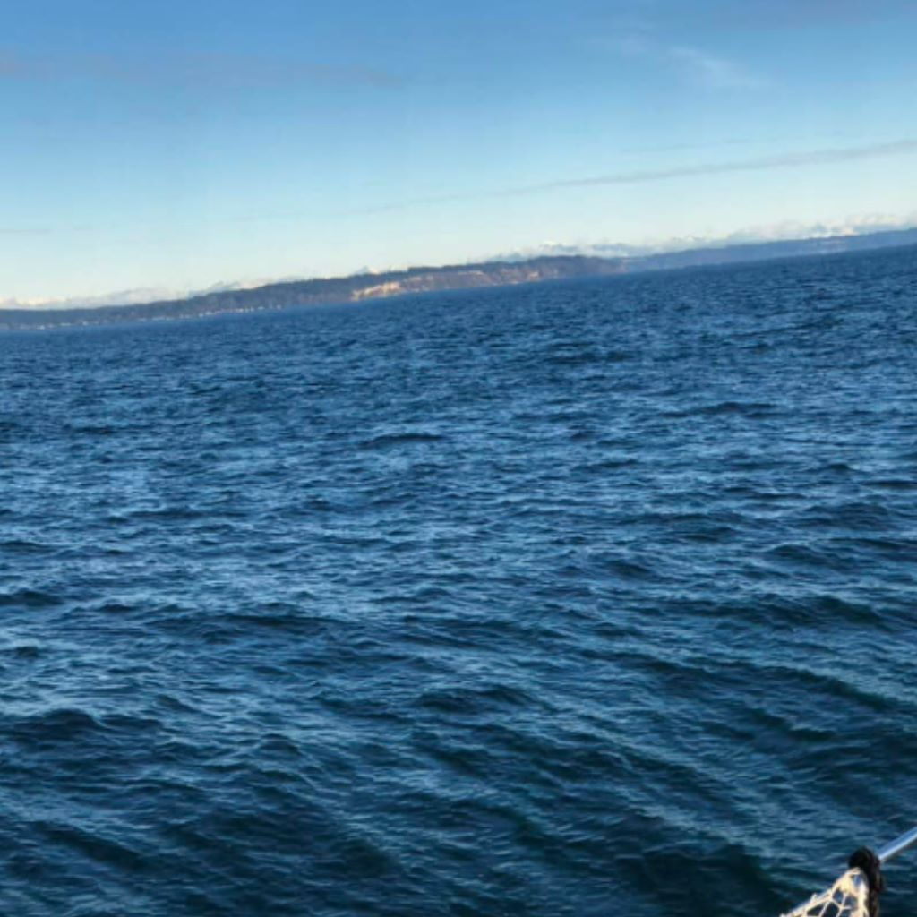 Puget Sound is just gorgeous