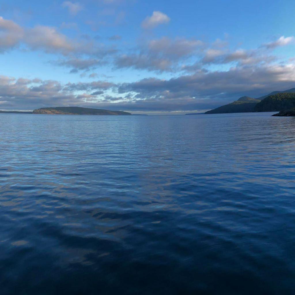 Morning on Jones Island…